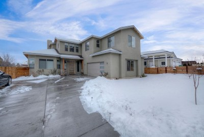 Reno Single Family Home New: 1620 S Arlington