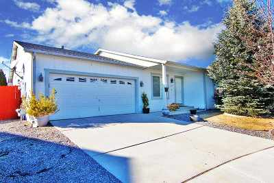 Reno Single Family Home For Sale: 18244 Almondleaf Ct