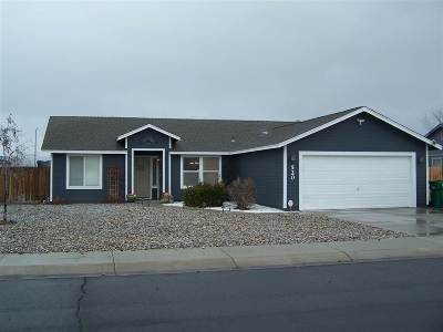 Fernley Single Family Home For Sale: 520 Darren Way
