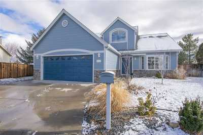 Carson City Single Family Home For Sale: 2163 Court Side Circle