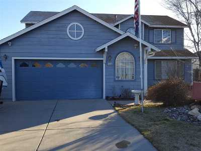 Reno Single Family Home For Sale: 8558 Turtle Creek Circle