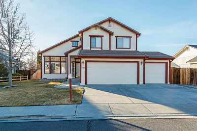 Sparks Single Family Home For Sale: 2395 Stone View Drive