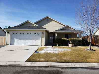 Gardnerville Single Family Home Active/Pending-Loan: 206 Ray May Way