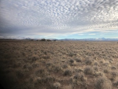 Minden Residential Lots & Land Active/Pending-Loan: 1831 Eldon Wy