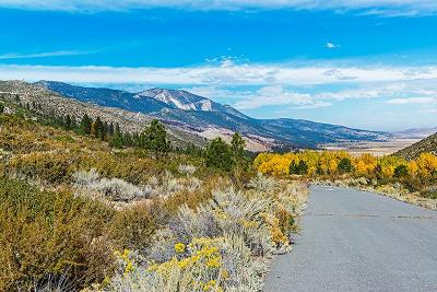 Washoe Valley Residential Lots & Land For Sale: 7805 Musgrove Creek Dr.