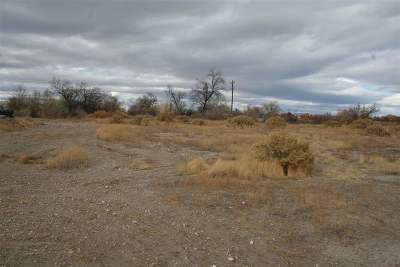 Fallon Residential Lots & Land For Sale: 2240 Dalila Street