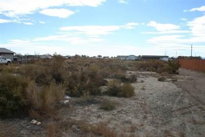 Fallon Residential Lots & Land For Sale: 560 Joel Way