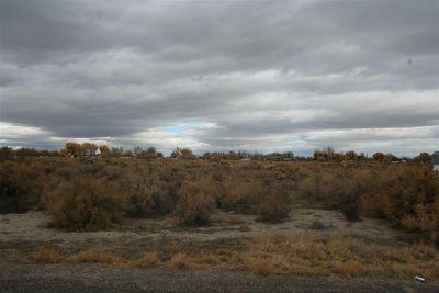 Fallon Residential Lots & Land For Sale: 755 Joel Way