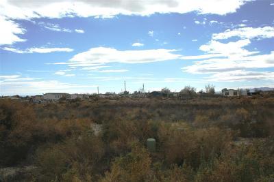 Fallon Residential Lots & Land For Sale: 650 Joel Way