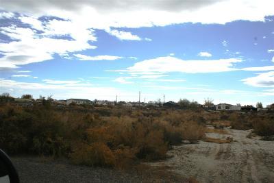 Fallon Residential Lots & Land For Sale: 620 Joel Way