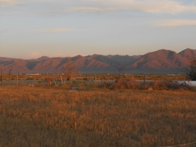 Battle Mountain Residential Lots & Land For Sale: 2744 Presidential Blvd