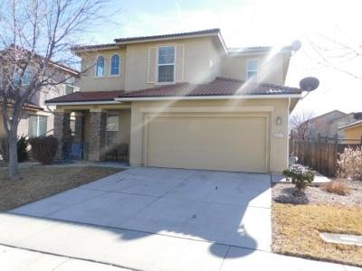 Sparks Single Family Home For Sale: 3737 Allegrini Dr