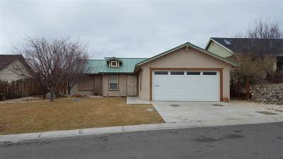 Gardnerville Single Family Home Active/Pending-Call: 28 Conner Way #NV