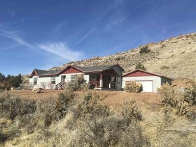 Reno Single Family Home For Sale: 555 Gymkhana Lane