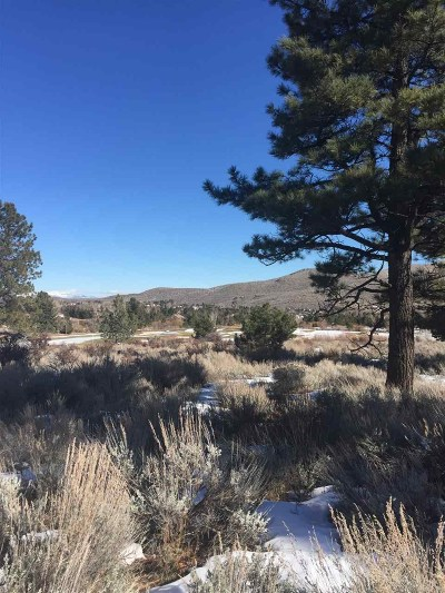 Reno Residential Lots & Land For Sale: 6625 Jung Ct.