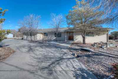 Minden NV Single Family Home For Sale: $599,900