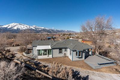 Washoe Valley Single Family Home Active/Pending-Loan: 235 Flicker Cir.
