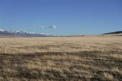 Winnemucca, Orovada, Paradise Valley, Lovelock, Imlay, Golconda Residential Lots & Land For Sale: Apn 14-0261-10 Moose Drive