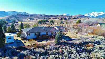 Washoe County Single Family Home For Sale: 2505 Trails End