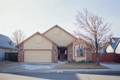 Carson City Single Family Home For Sale: 469 Windtree Cir
