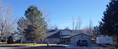 Winnemucca Single Family Home For Sale: 5030 Offenhauser Drive