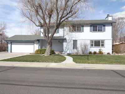 Gardnerville Single Family Home For Sale: 1529 Hussman Avenue