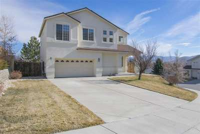 Carson City Single Family Home For Sale: 872 Kennedy Drive