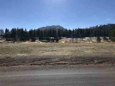 Washoe Valley Residential Lots & Land For Sale: 41 Lightning W Rd
