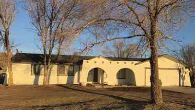 Washoe County Single Family Home For Sale: 10850 Chestnut