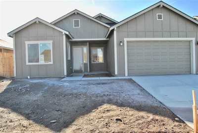 Fernley Single Family Home For Sale: 1787 Canal Dr