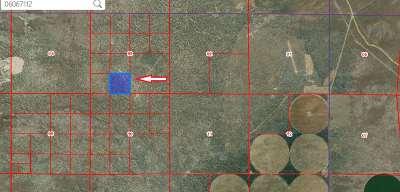 Winnemucca NV Residential Lots & Land For Sale: $20,000