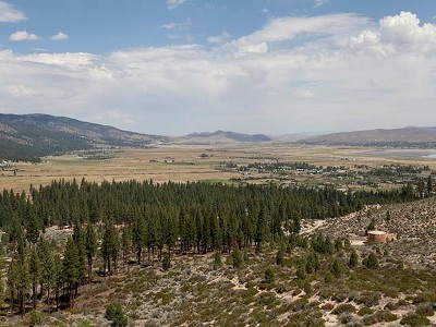 Washoe Valley Residential Lots & Land For Sale: 7300 Pine Canyon