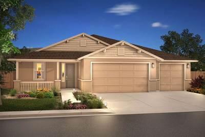 Gardnerville Single Family Home For Sale: 1212 Lasso Lane