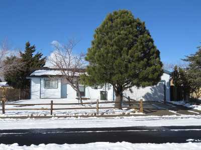 Gardnerville Single Family Home For Sale: 1376 Rancho Rd.
