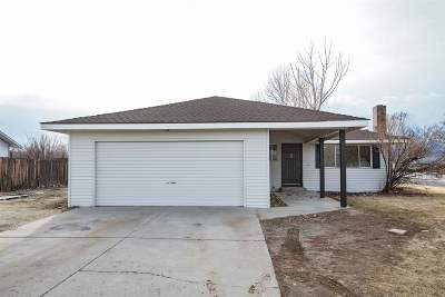 Gardnerville Single Family Home Active/Pending-Loan: 1269 Bolivia Way