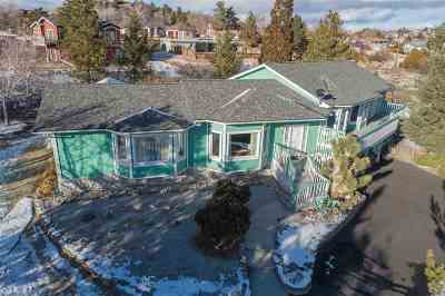 Washoe County Single Family Home For Sale: 505 Greenstone Dr.