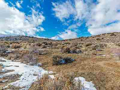 Reno Residential Lots & Land For Sale: 205 Antelope Valley Ct