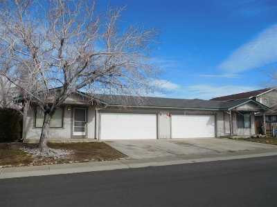 Gardnerville Multi Family Home Active/Pending-House: 745 Robin Drive