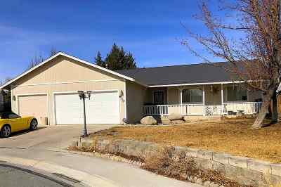 Fernley Single Family Home For Sale: 810 Brittany