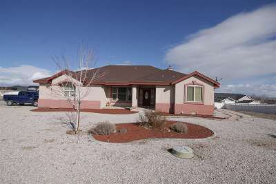 Fernley Single Family Home For Sale: 1140 Sage Drive