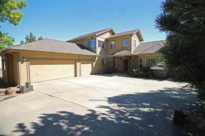 Reno Single Family Home For Sale: 80 Chinchilla Lane
