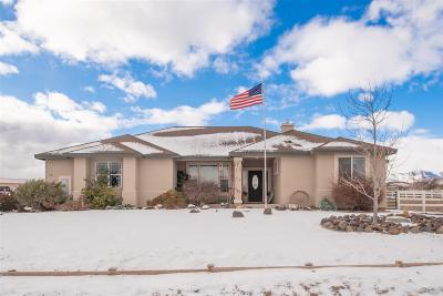 Fernley Single Family Home For Sale: 835 Sage St