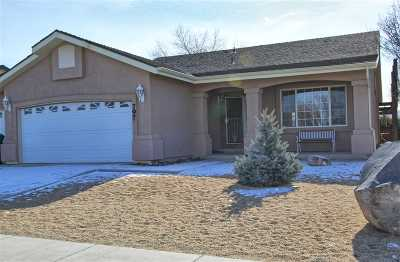Fernley Single Family Home For Sale: 797 Divot Drive