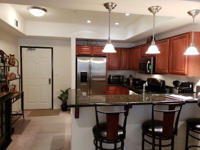 Washoe County Condo/Townhouse For Sale: 200 W 2nd Street #311
