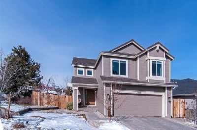 Washoe County Single Family Home For Sale: 2061 Mountain Vista