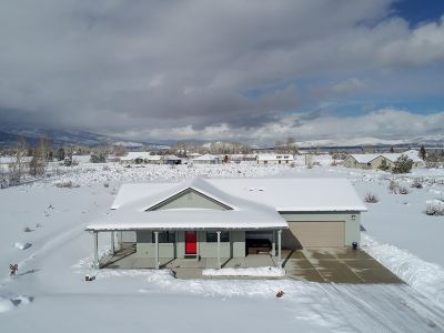 Washoe Valley Single Family Home Active/Pending-Call: 7464 Paloma Linda Way