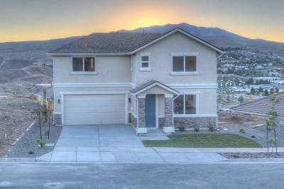 Washoe County Single Family Home For Sale: 3644 Remington Park Dr.