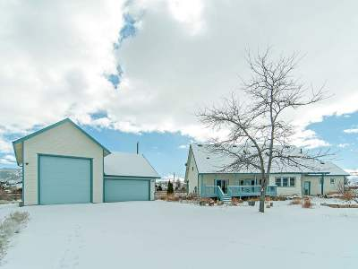 Washoe County Single Family Home For Sale: 15600 Toll Road