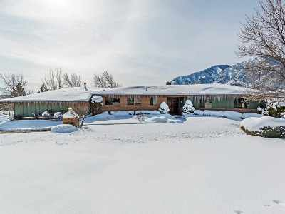 Carson City Single Family Home For Sale: 3464 Alpine View