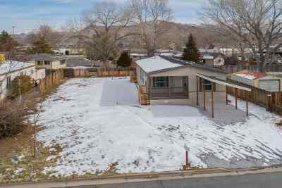 Reno Manufactured Home For Sale: 9530 Fleetwood